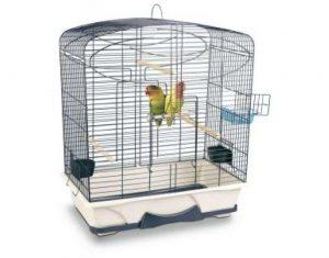Donde comprar jaulas para inseparables