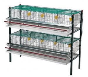 Mejores jaulas para codornices