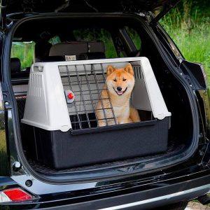 Transportín para perros en el carro